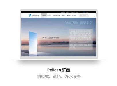 Pelican湃能