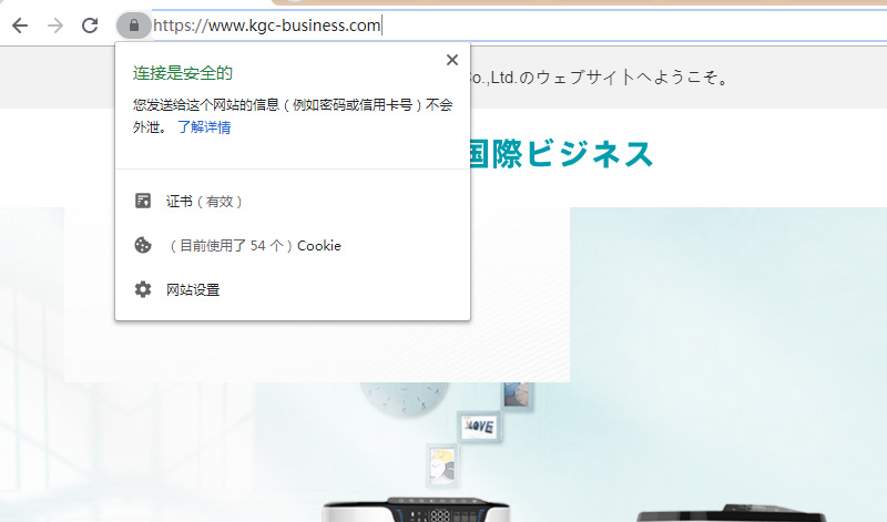 """解决常见谷歌广告(Google AdWords)由于""""目标网址无效""""被拒登问题"""